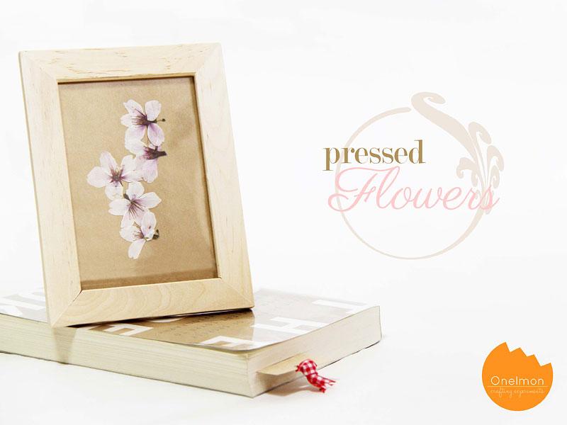 DIY Tutorial: Pressed Flowers | @onelmon